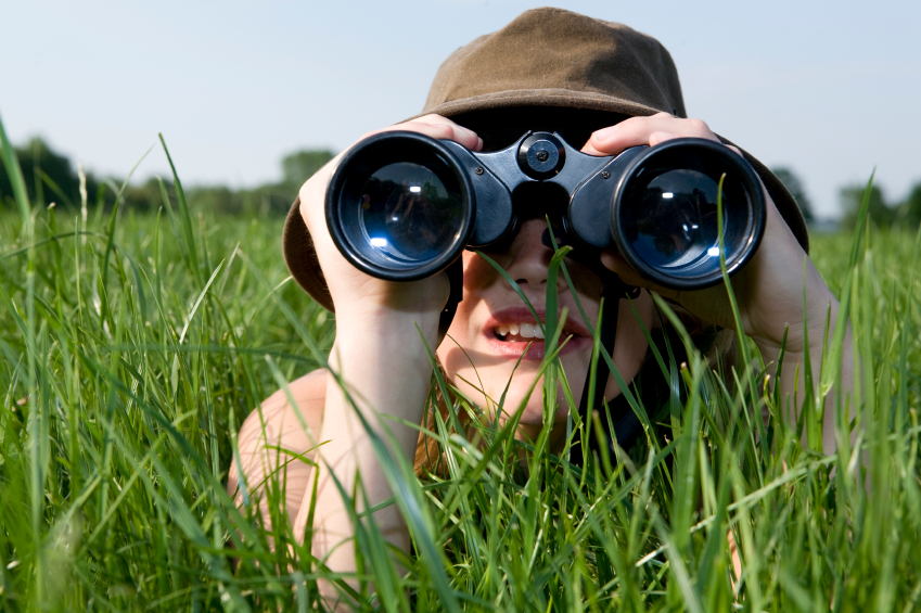 Scouting the SEO Competition