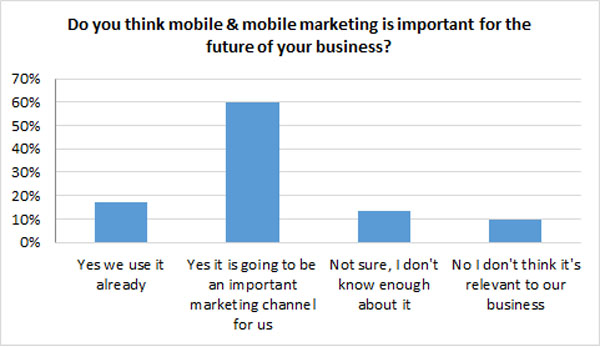 Importance of mobile marketing chart